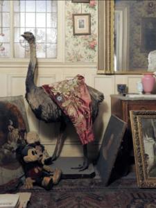 L'Appartement oublié de Marthe de Florian-La Rue des Dames-Annabel-Gaelis Editions